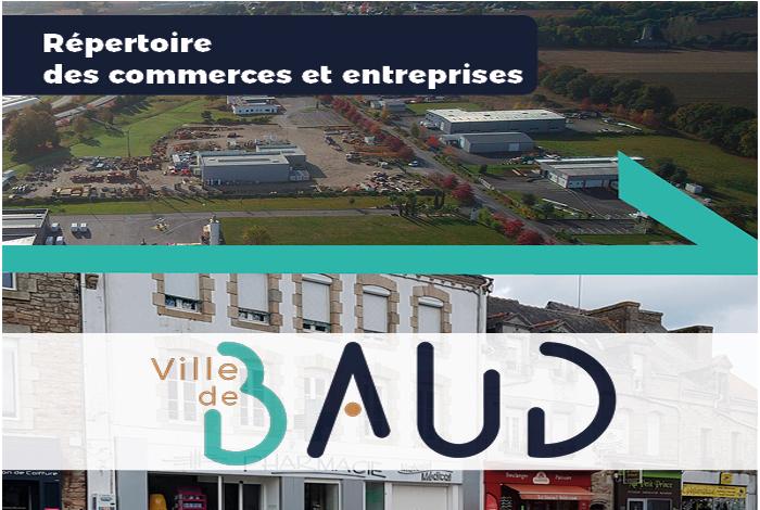 Registre des entreprises de Baud